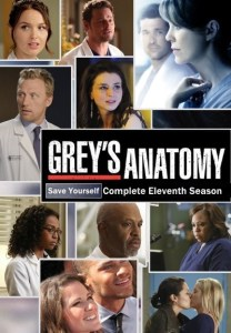 greys-anatomy-eleventh-season.32035