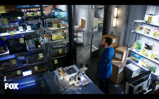 Hodgins just couldn't stop working. He love his job.